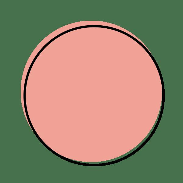 Dot Icon Blush