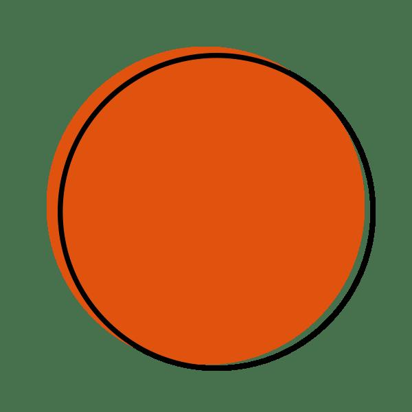 Dot Icon Orange
