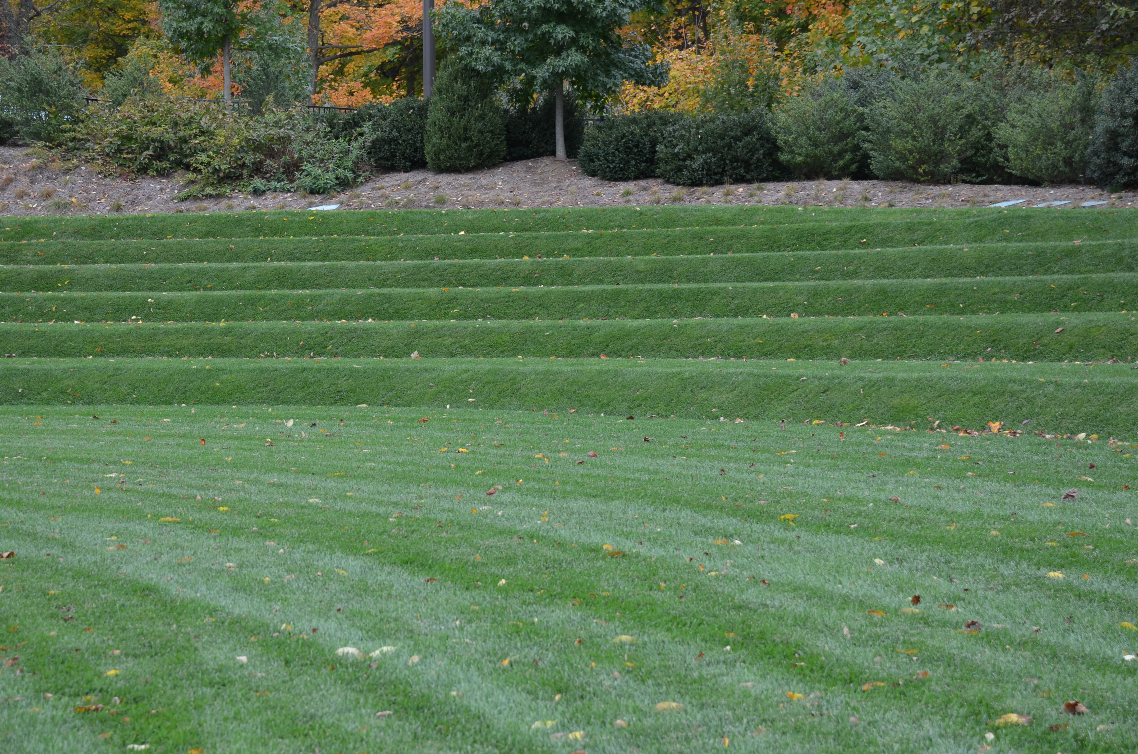 Raised Garden Lawns