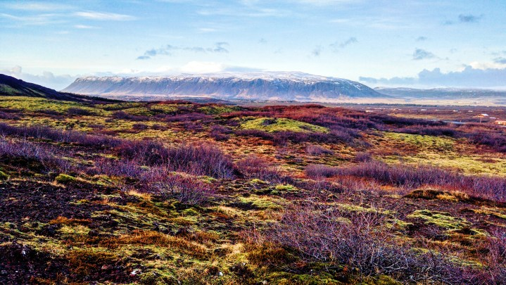 A photo of a wide open field in Iceland. Nature it truly Iceland's lifeline.