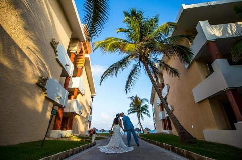 A couple kisses beneath a giant palm tree on their wedding day. A tropical view is one of the best parts about having a destination wedding.