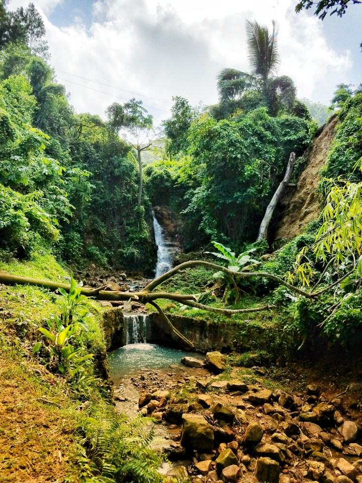 The sulfur springs park area featuring a waterfall, natural pool, and many trees, the author says this is a must see during your one day in Soufriere