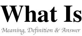 what-is-blog-logo
