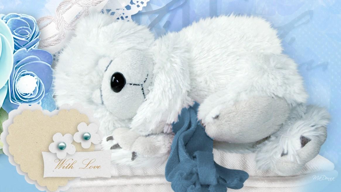cute-teddy-wallpaper