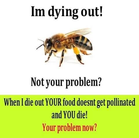 Not your problem?