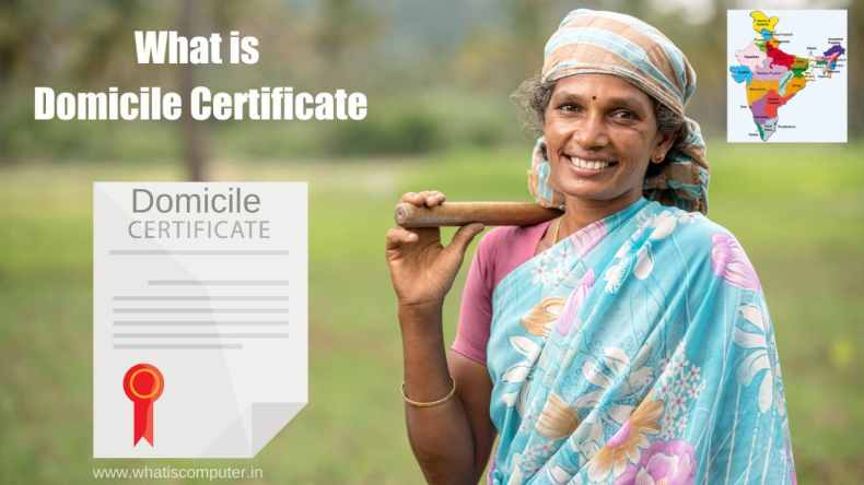 What is Domicile Certificate: How to get Domicile Certificate