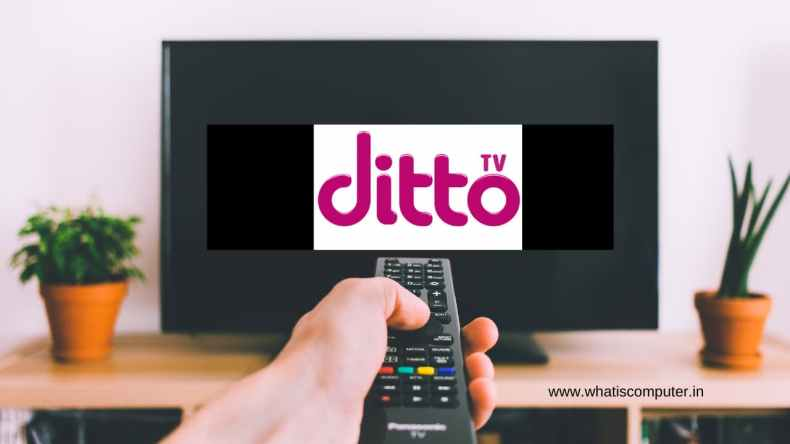 How to Use Ditto TV: What is Ditto TV, How to Play on PC & Recharge