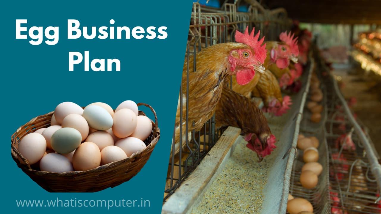 Egg Business | Egg Wholesale Business Plan | Egg Farming