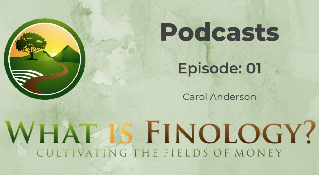 Podcast Episode 1 With Carol Anderson of Money Quotient