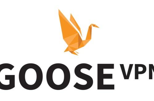 Review of Goose VPN