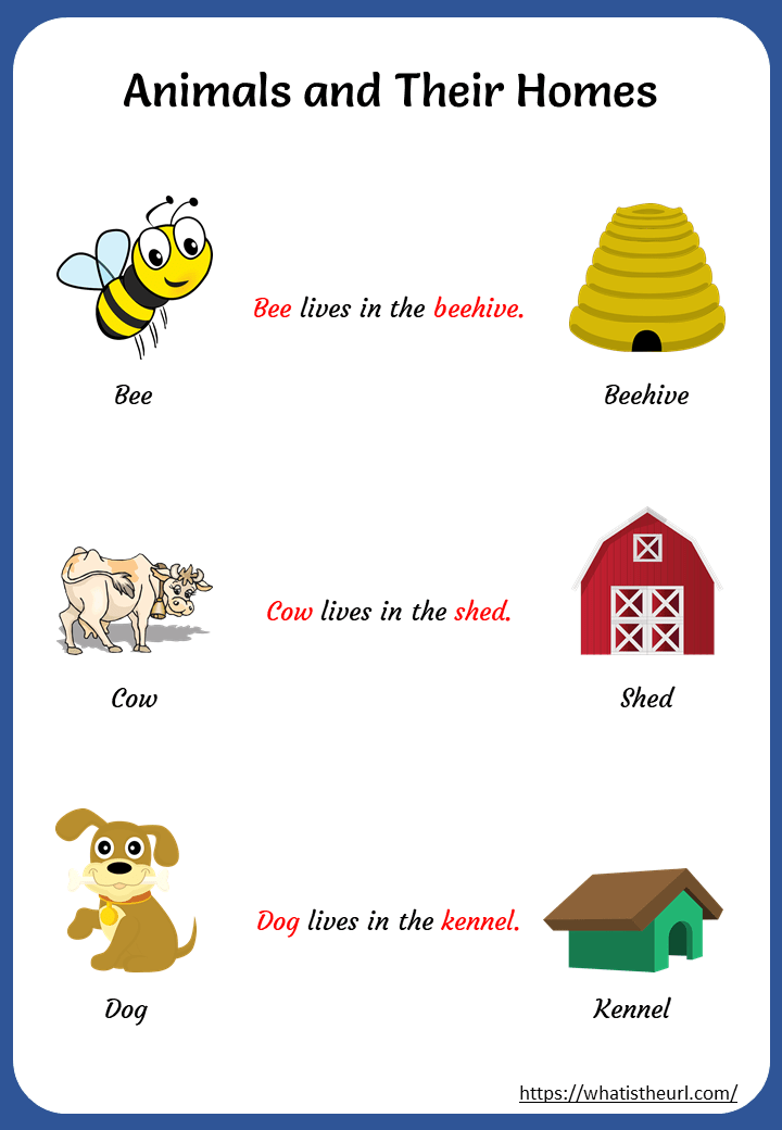 Printable Animals And Their Homes Worksheets Your Home Teacher