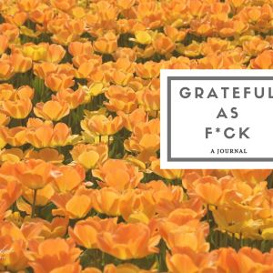 grateful as fuck gratitude journal