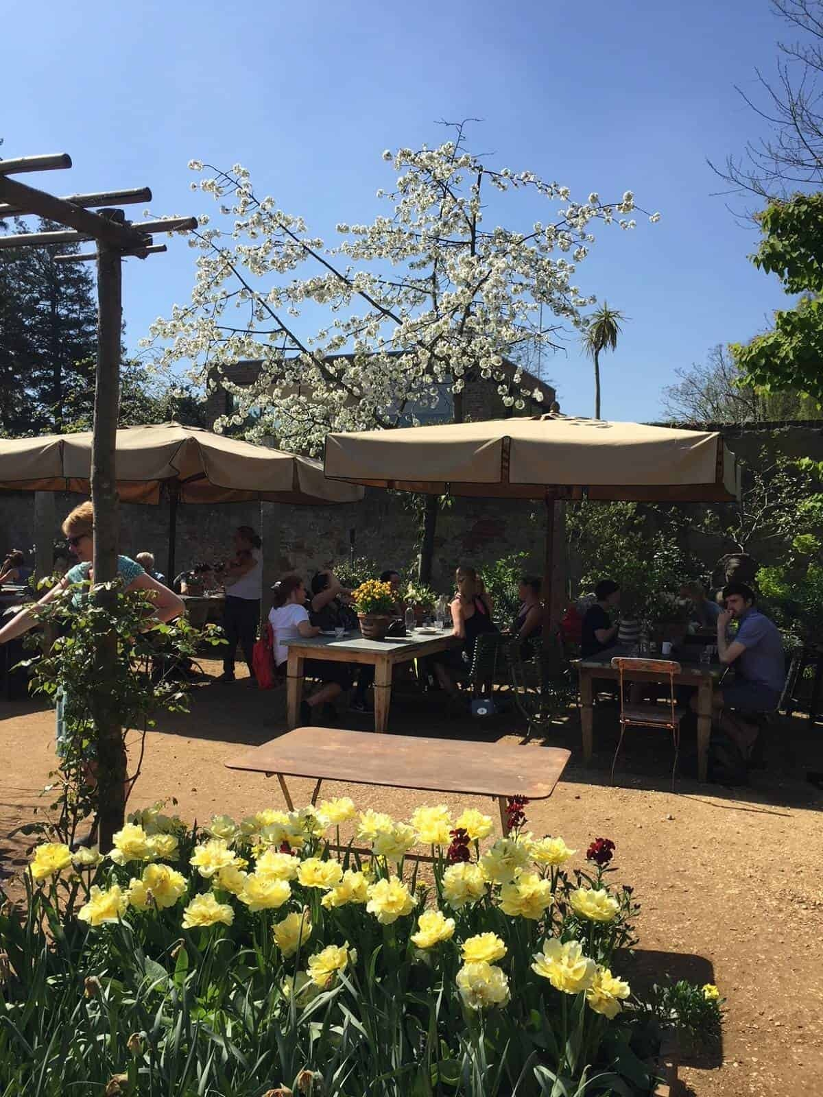 The Teahouse at Petersham Nurseries in Richmond