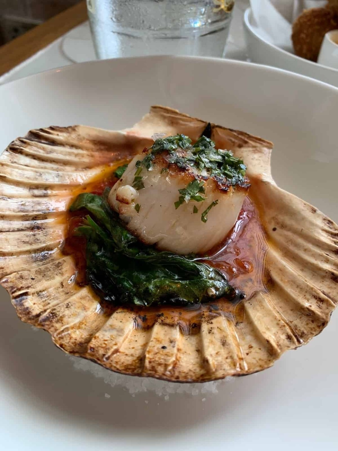 Hand-dived scallop from Seabird