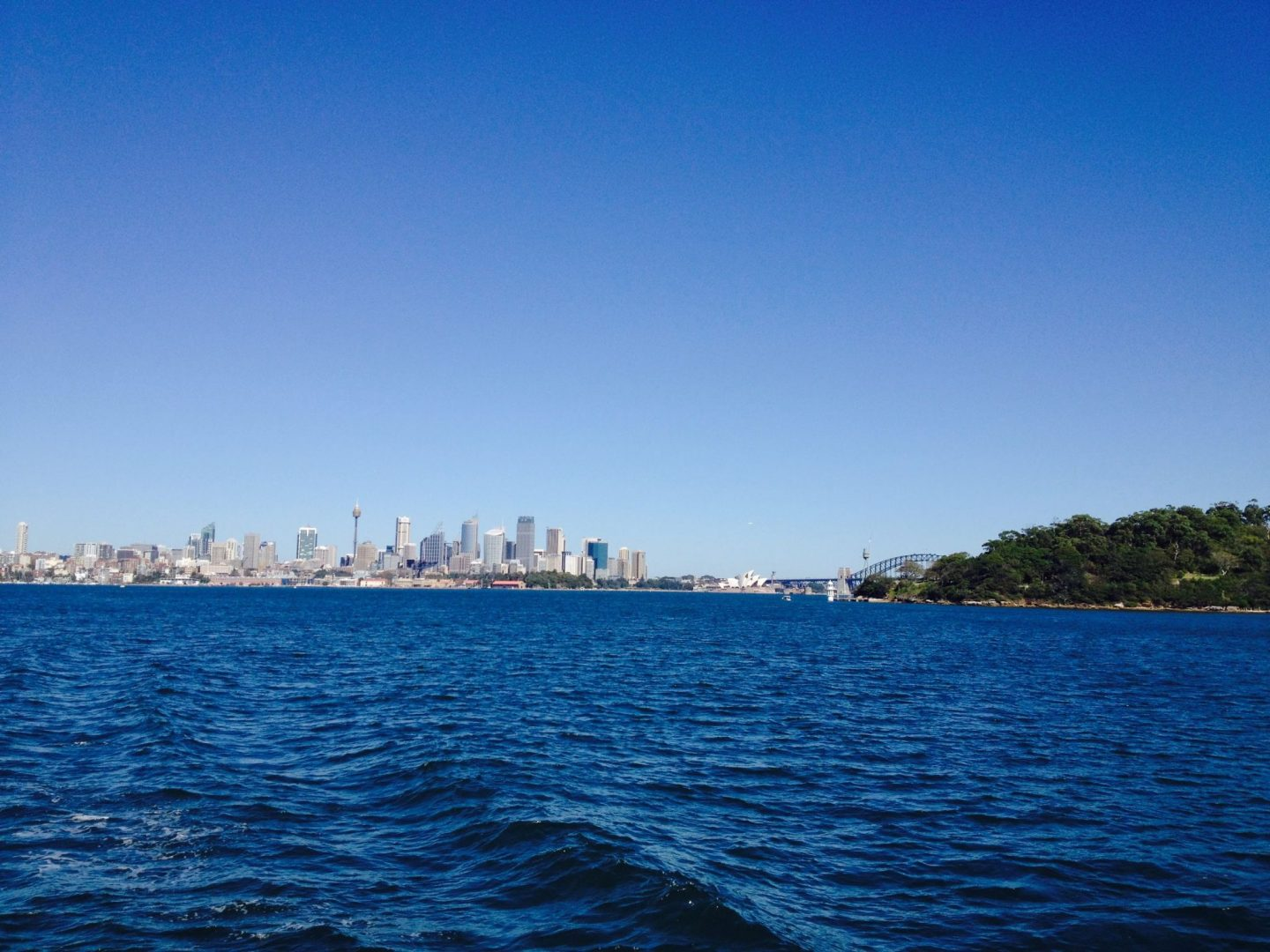 Views of Sydney from the ferry
