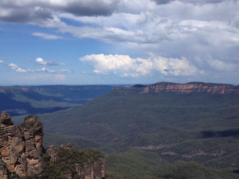 Eucalyptus trees of the Blue Mountains, Australia