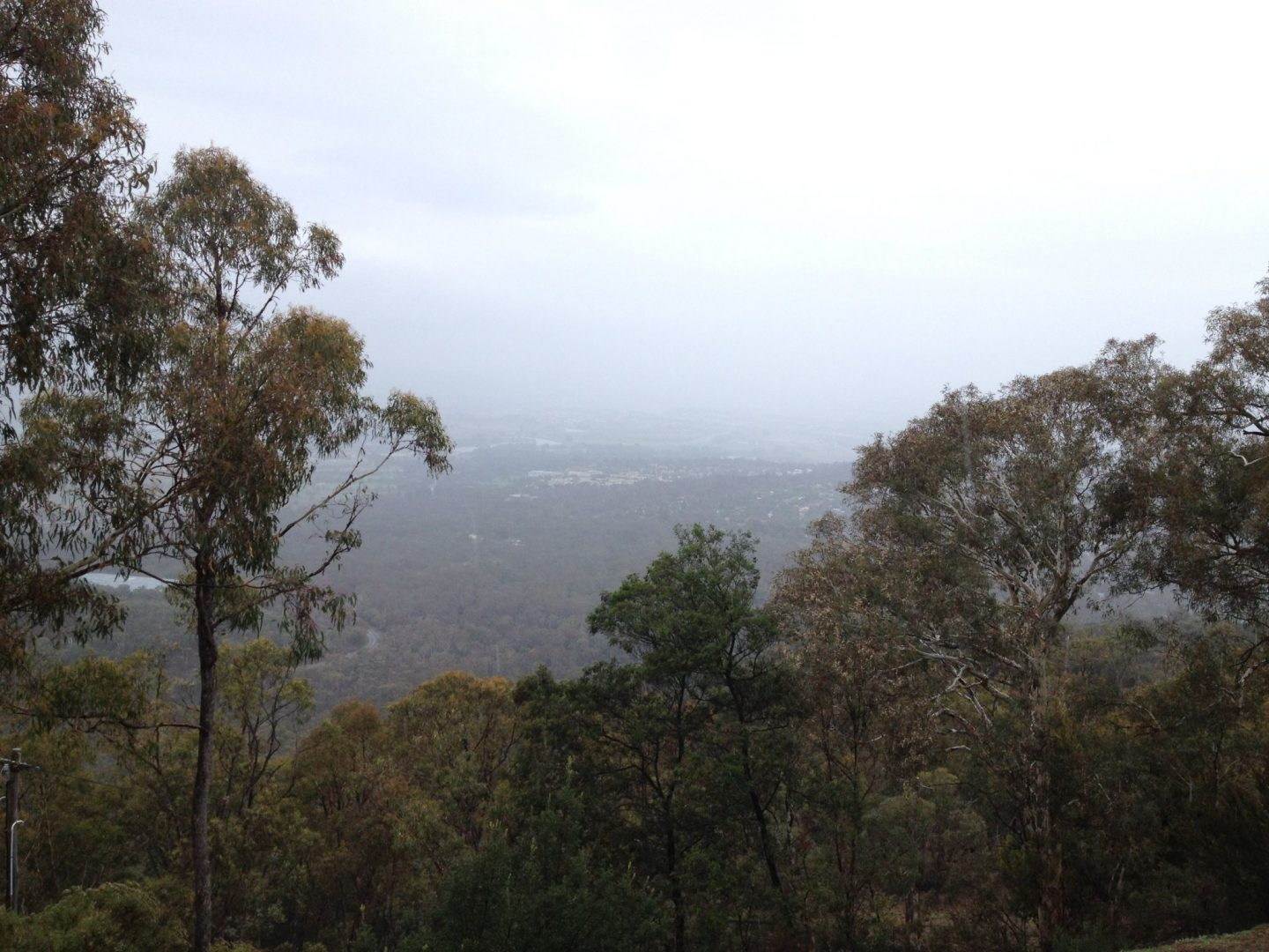 Misty views of Canberra, Australia