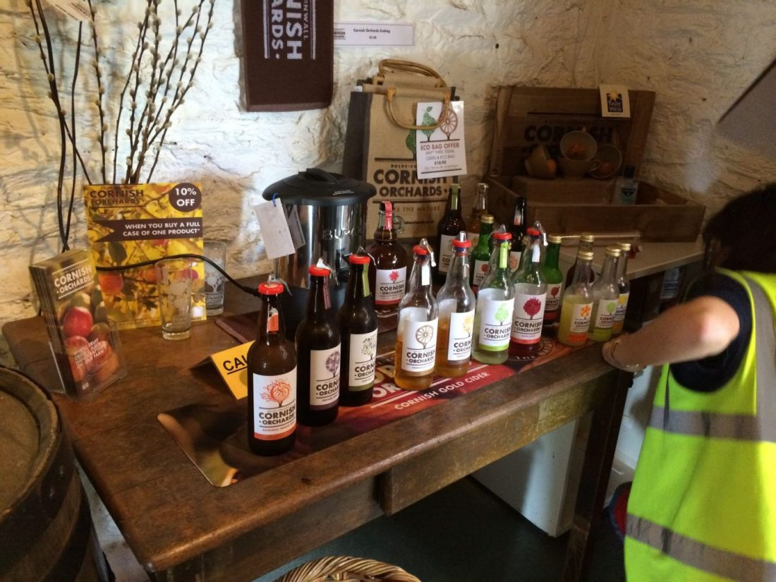 Cider tasting at Cornish Orchards