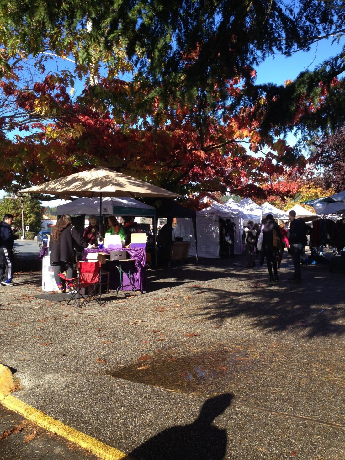 Market stalls in the fall on Salt Spring Island