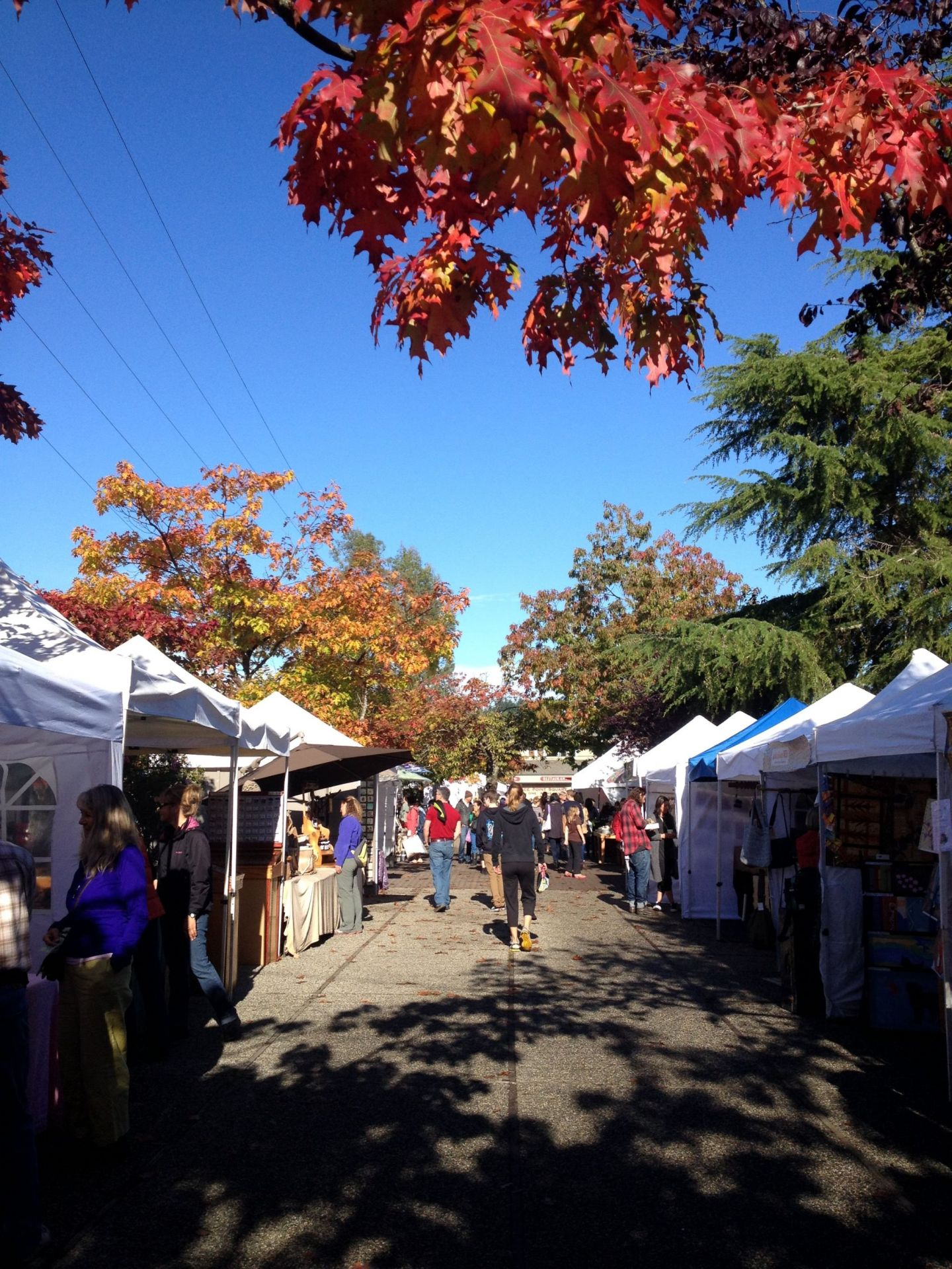 Market stalls in the fall