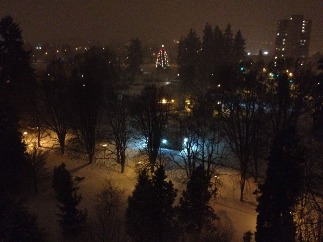 Christmas tree in Moody Park, New Westminster