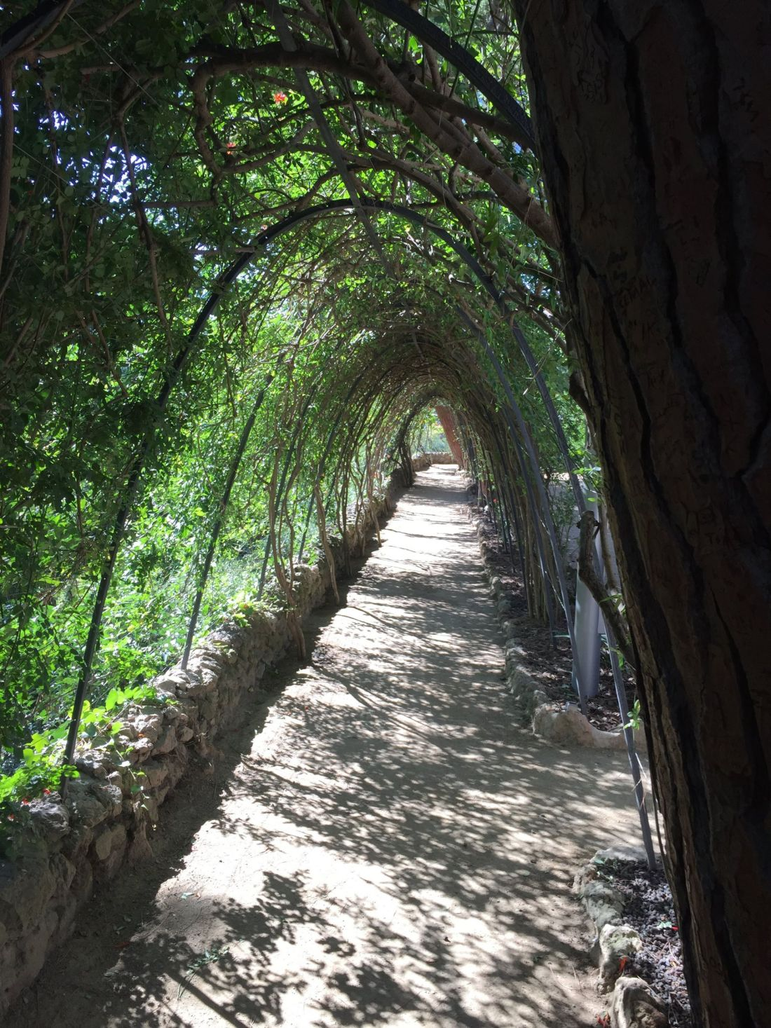 Gardens of the Gaudi House, Parc Guell
