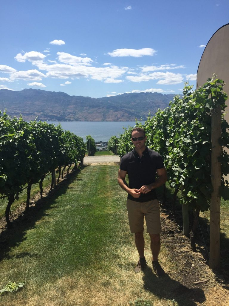 Vineyards at Mission Hill, Okanagan