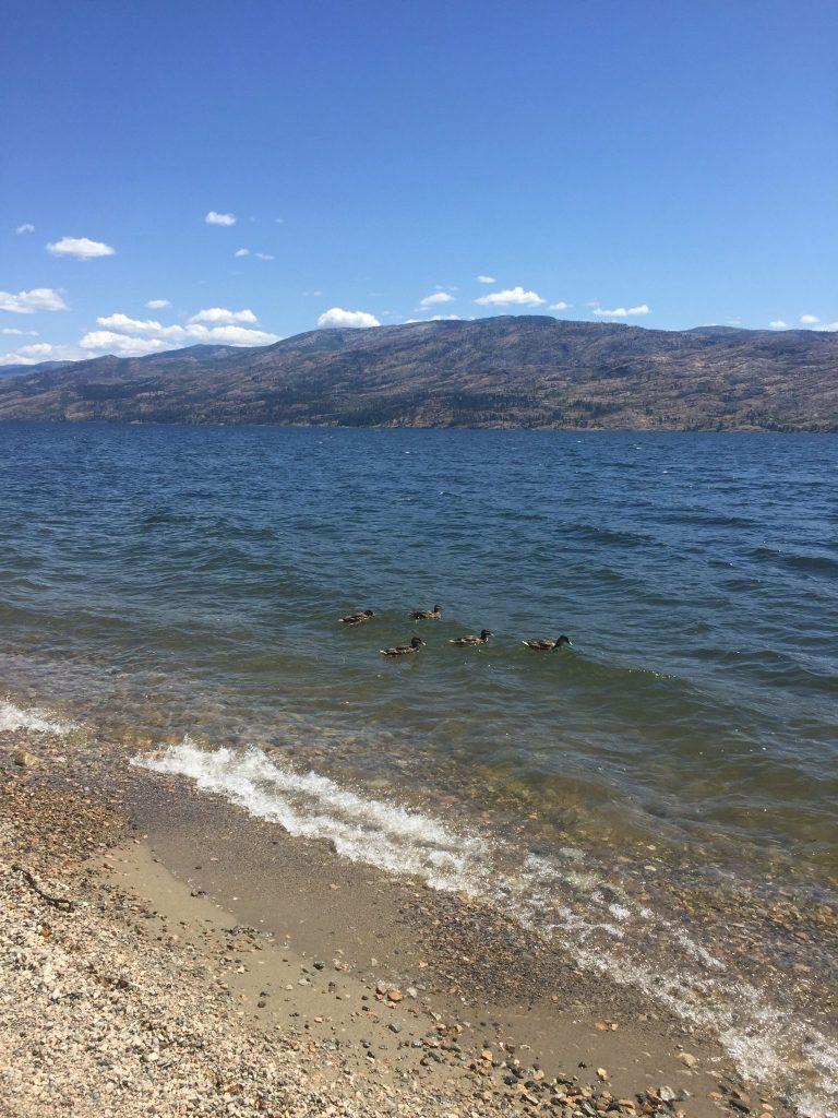 Lake Okanagan in Peachland