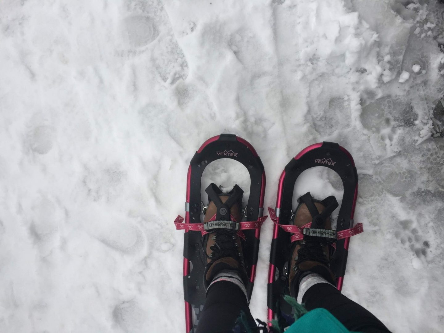 Donning snowshoes on Mount Seymour, Vancouver
