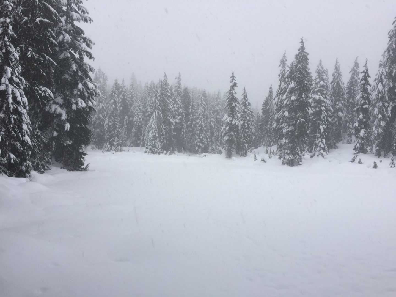 Winter wonderland on Mount Seymour, Vancouver