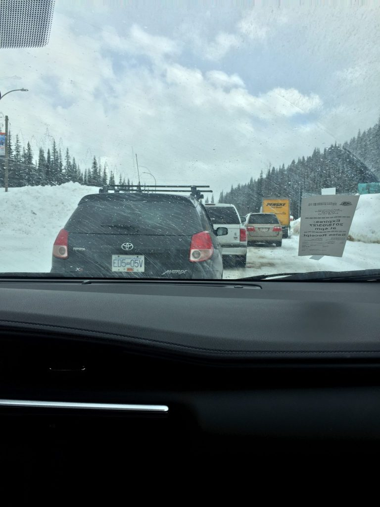 Car line up for a controlled avalanche near Revelstoke