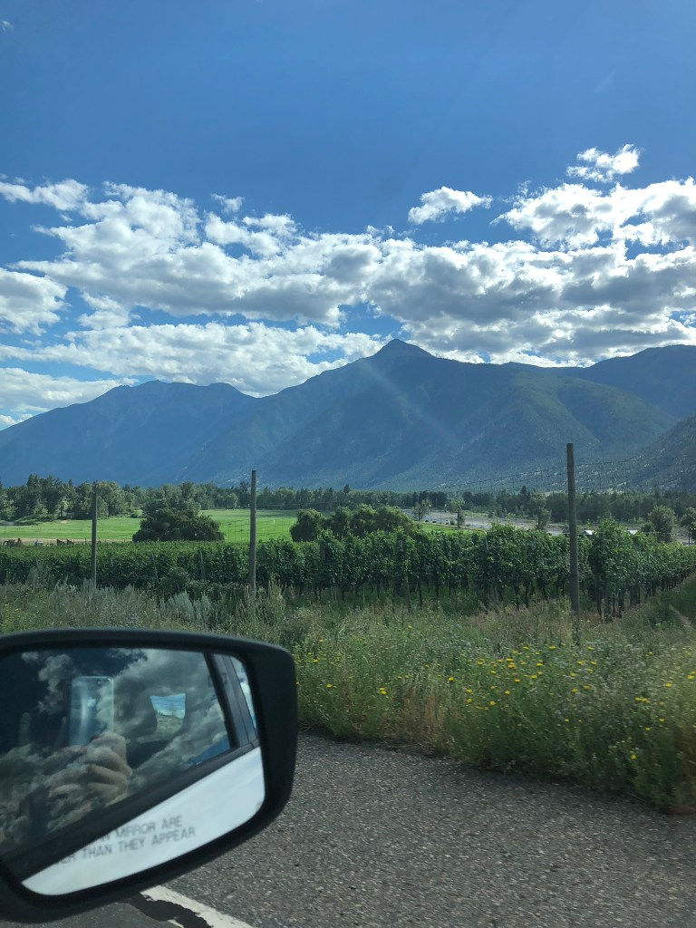 Taking in the views on our way to the Osoyoos in the Okanagan, BC
