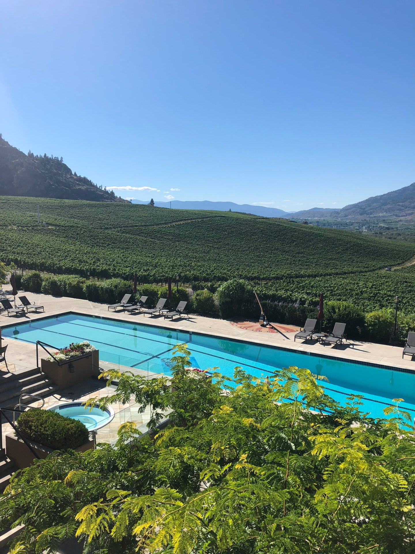 Oliver and Osoyoos: Visiting the Wineries