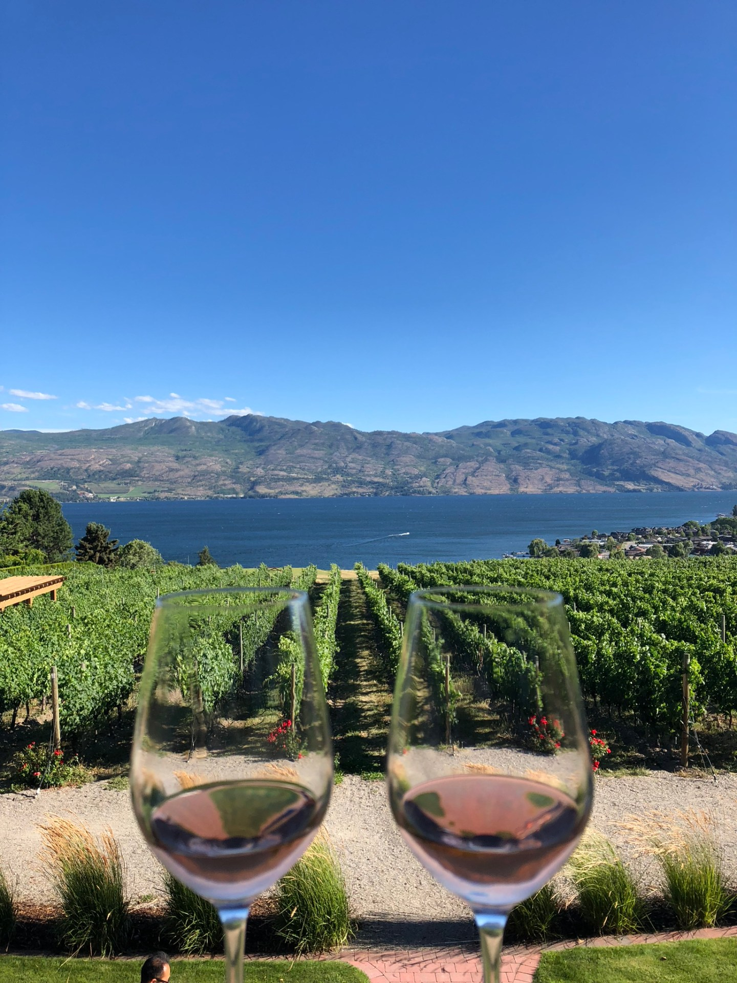 Glasses of wine at a winery in Kelowna
