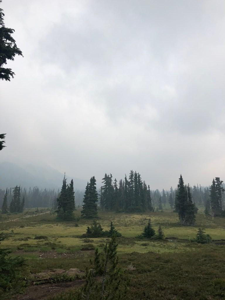 Gloomy scenery near Garibaldi Lake