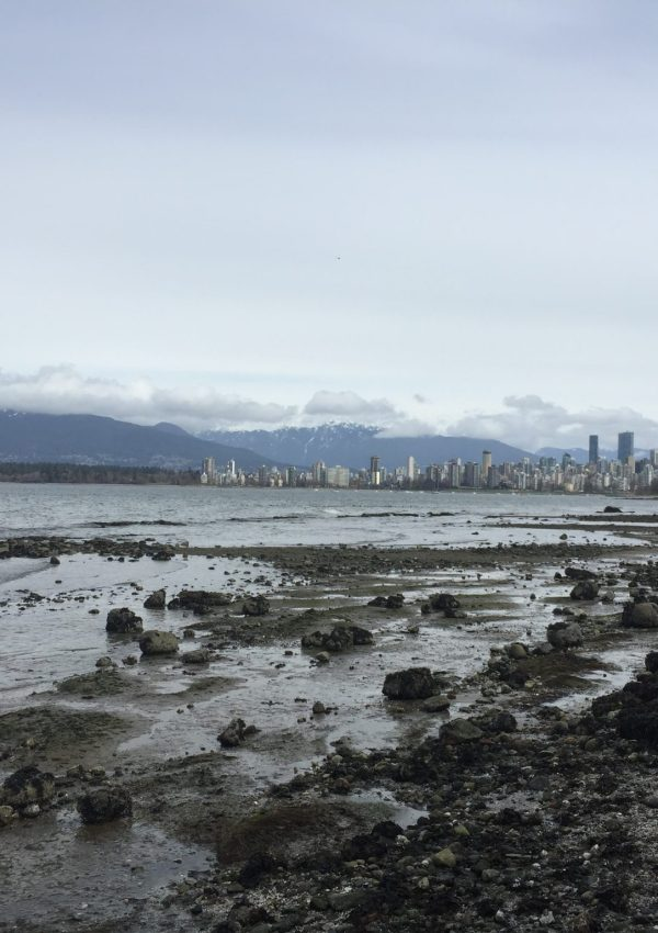 The Vancouver skyline from Kitsilano, British Columbia
