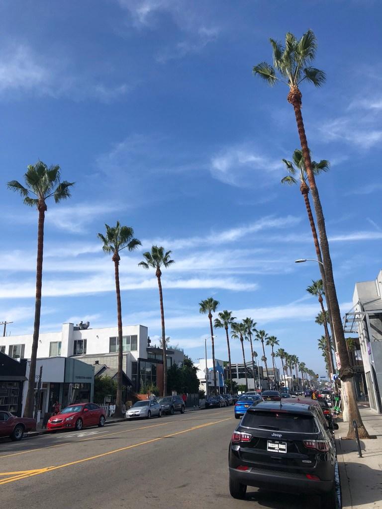 Abbot Kinney Boulevard, LA