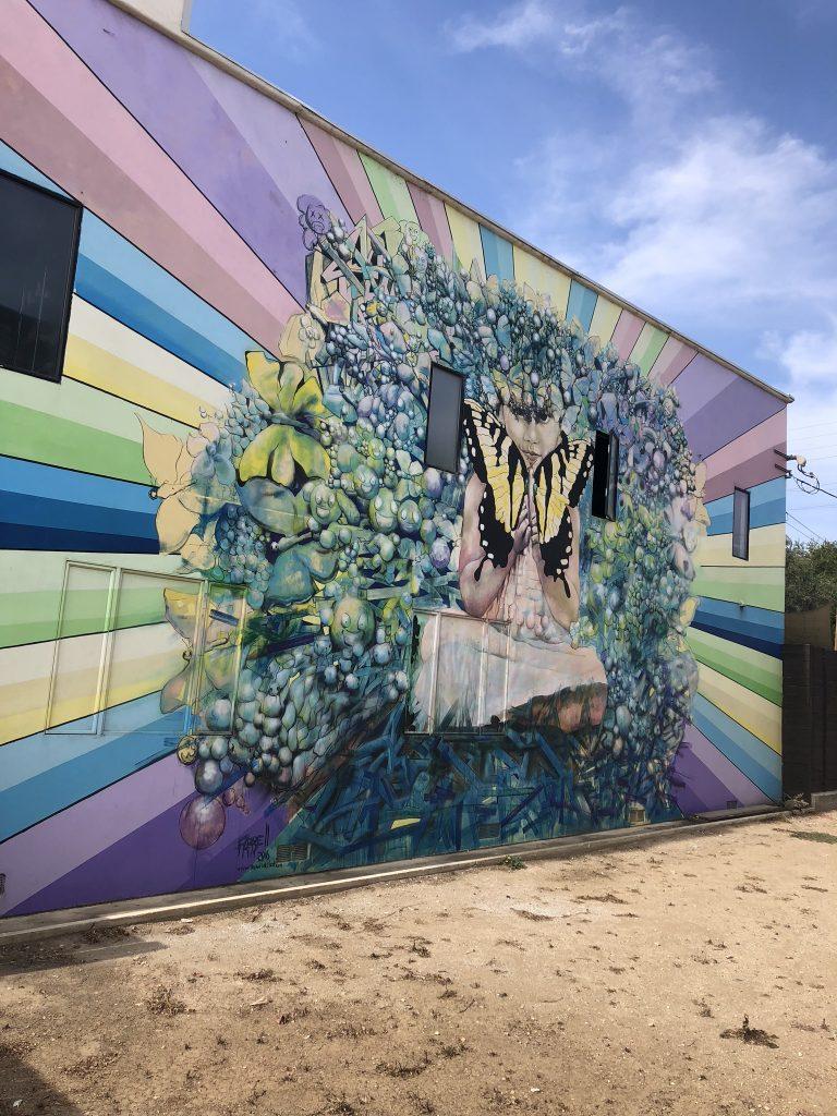 Street art and murals in Venice, LA