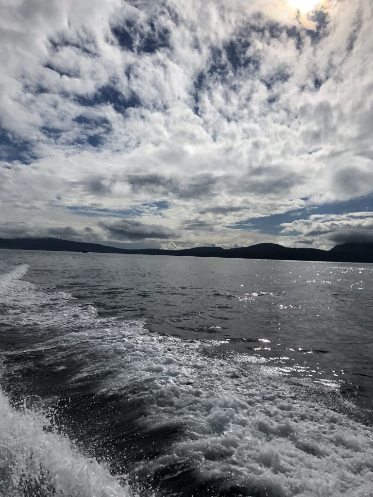 The sea and sky off Vancouver while whale watching