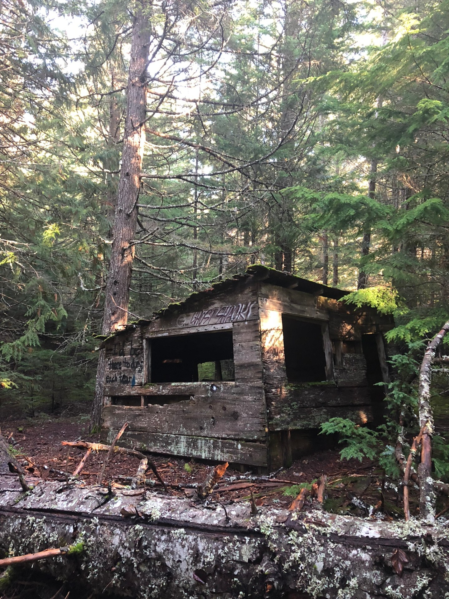 Abandoned house in the forest in Parkhurst near Whistler