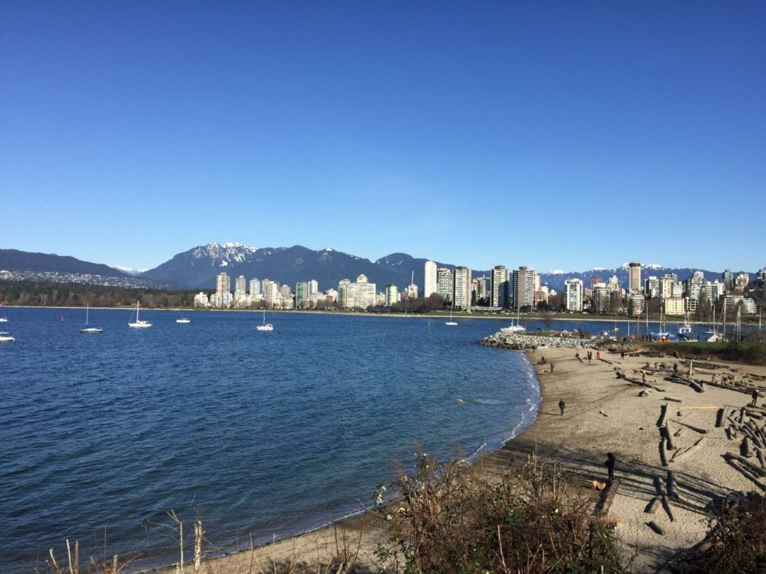 Dog beach in Kitsilano, Vancouver in the winter