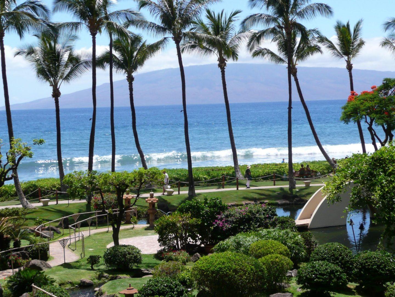 Palm trees on Kaanapali Beach, Hawaii