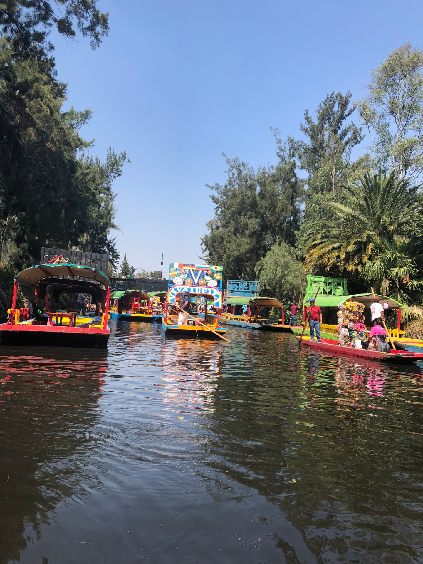 Trajineras in the canals of Xochimilco