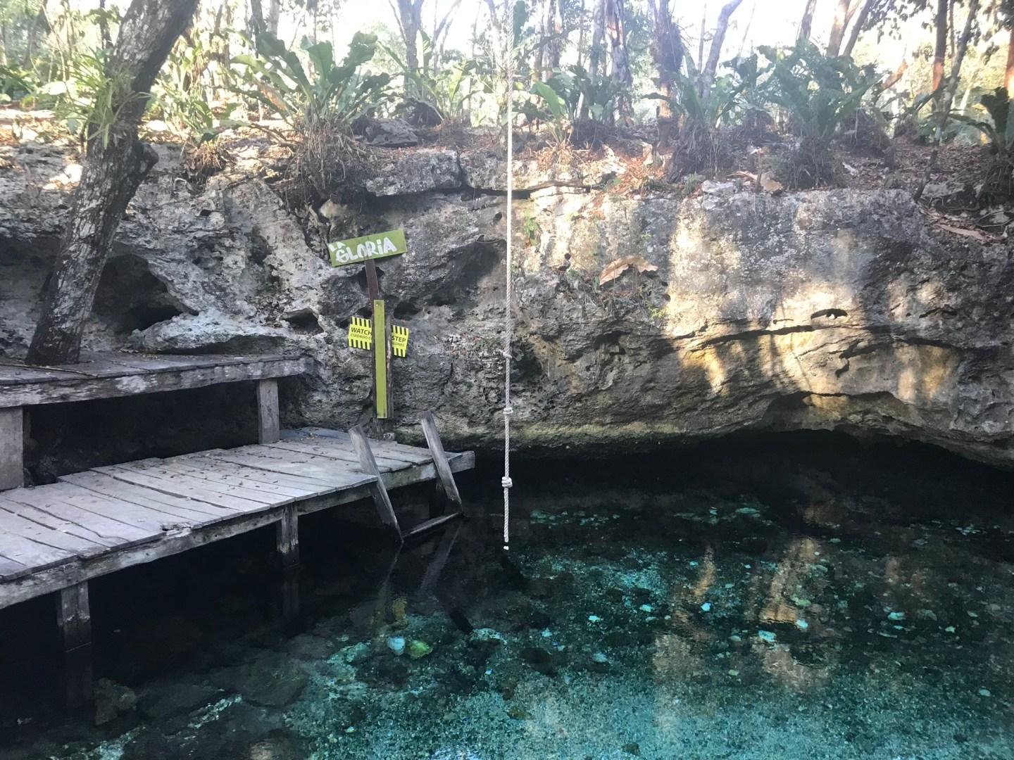 Rope swing at the cenote in Mexico