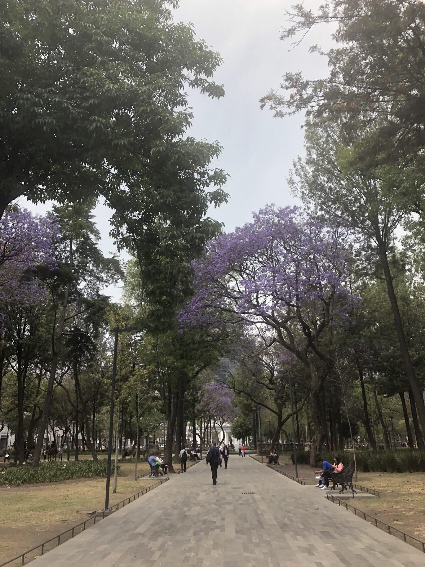 Park Alameda Central, Mexico City