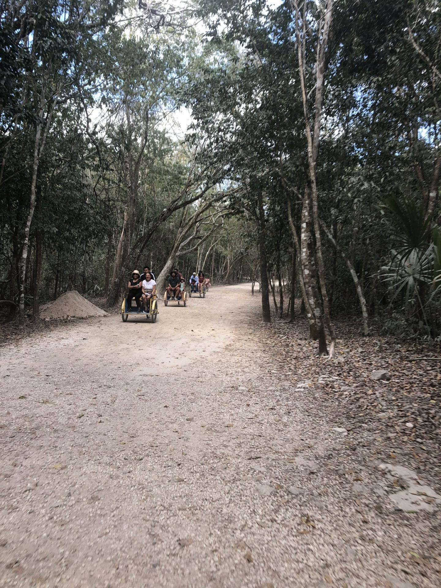 Riding to Coba, Riviera Maya