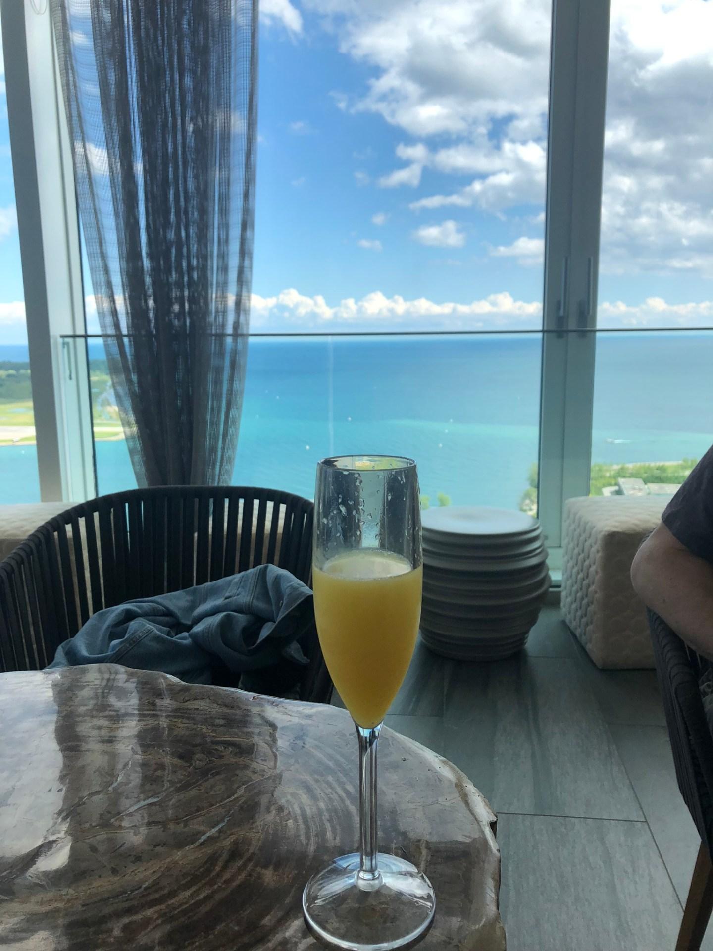 Summer in Toronto: mimosa overlooking Lake Ontario