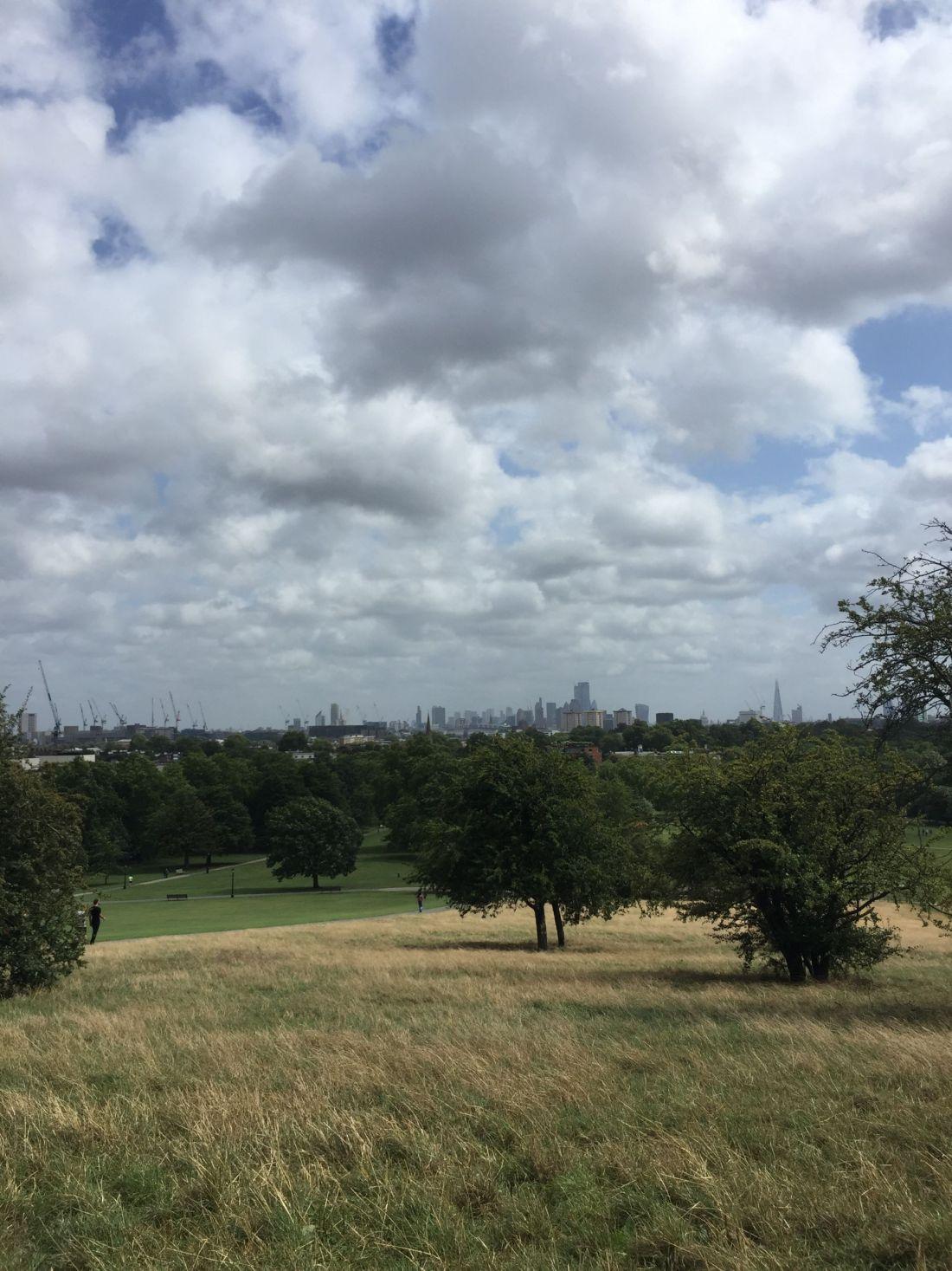 Views over Primrose Hill, London