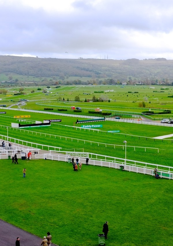 Cheltenham Races: An Ultimate Guide