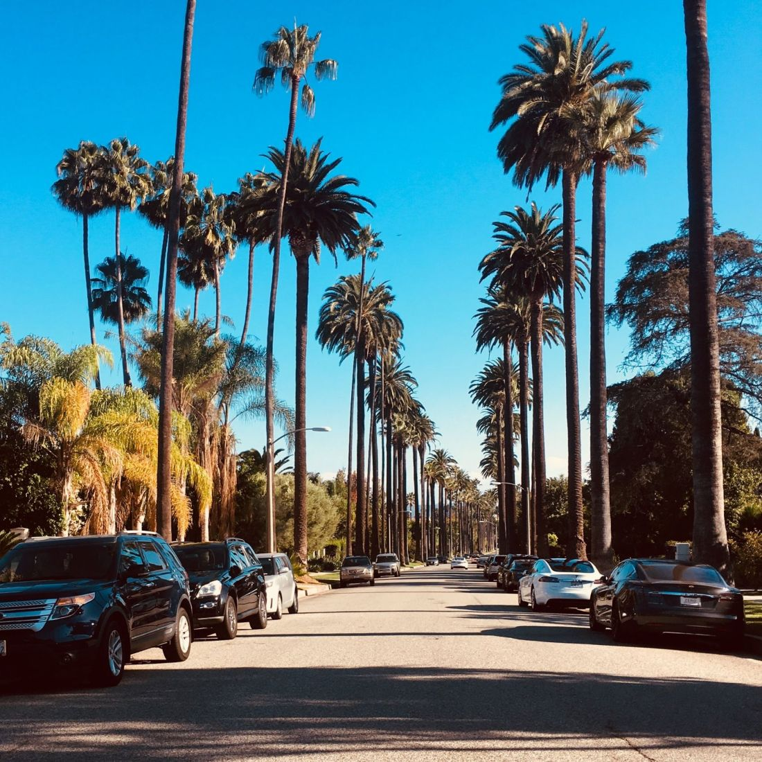 Where to stay in Los Angeles: Beverly Hills
